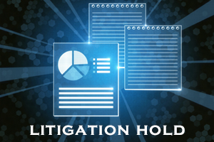 Litigation Hold Policies, blog by Elizabeth Klesmith, Tuesley Hall Konopa, LLP