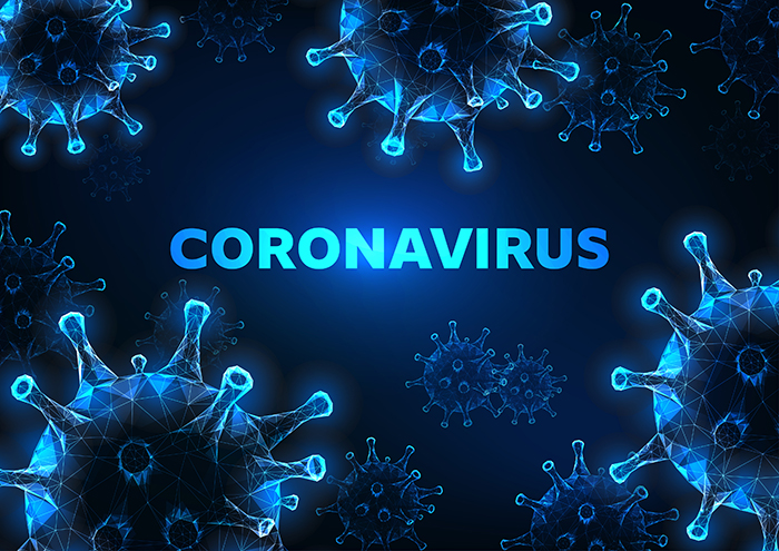 Work in the Time of Coronavirus by Business Law Attorney, Michael J. Hays